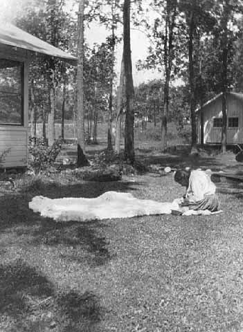 An old photograph of a Woman Working on a Rabbit Robe - Mille Lacs.