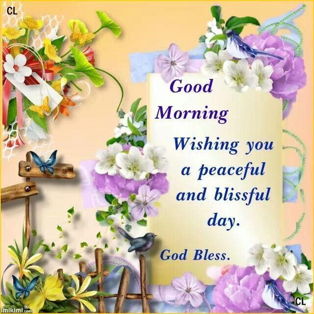 Good Morning, Wishing You A Peaceful And Blissful Day. God