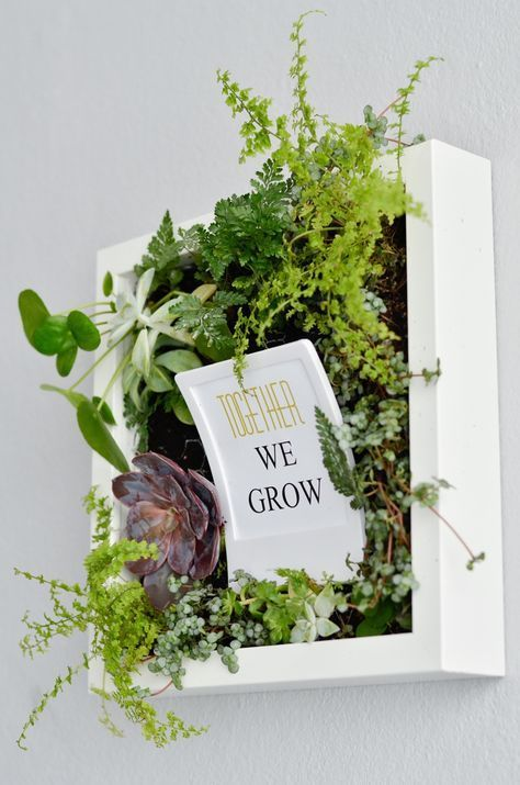 bepflanzte bilder f r die wand idee together we grow quote spr che wall flowers herbs. Black Bedroom Furniture Sets. Home Design Ideas