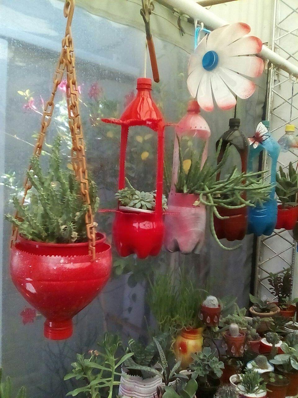 Mi jard n colgante reciclado reutilizando for Ideas para jardin reciclado