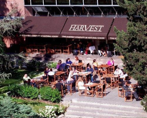 Harvest Madrid En Barrio De Salamanca En Pleno
