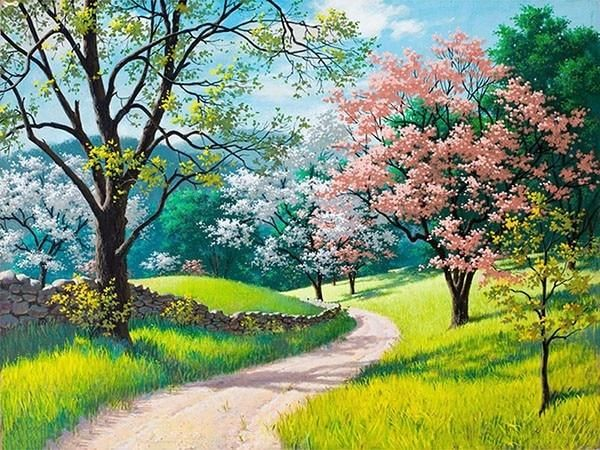 Blossom Road Paint By Numbers Anime Scenery Landscape Wallpaper Landscape Paintings