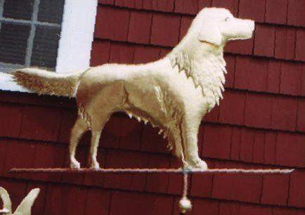 Golden Retriever Weathervane Cape Cod Cupoloa Animals Dog