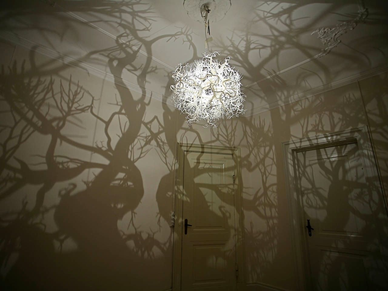 Forms in nature light sculpture projects a forest of shadowy tree forms in nature light sculpture projects a forest of shadowy tree branches arubaitofo Choice Image