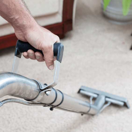 Efficient Carpet Cleaning Service In Brighton Carpet Cleaning Hacks How To Clean Carpet Carpet Cleaning Service