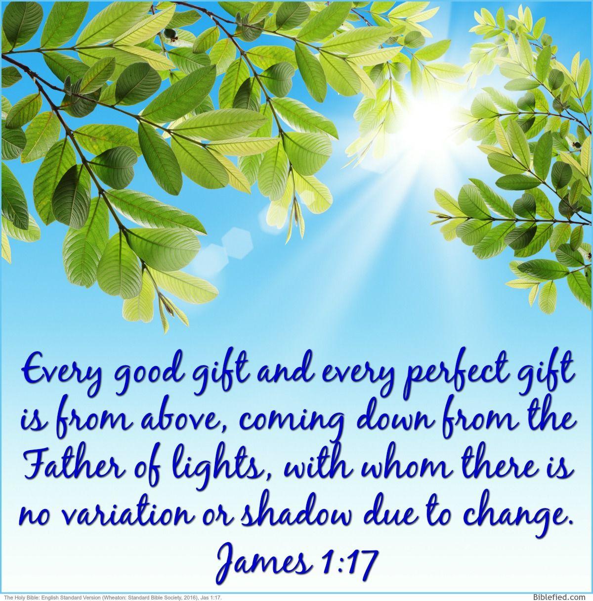 Bible Study_James 2 - YouTube