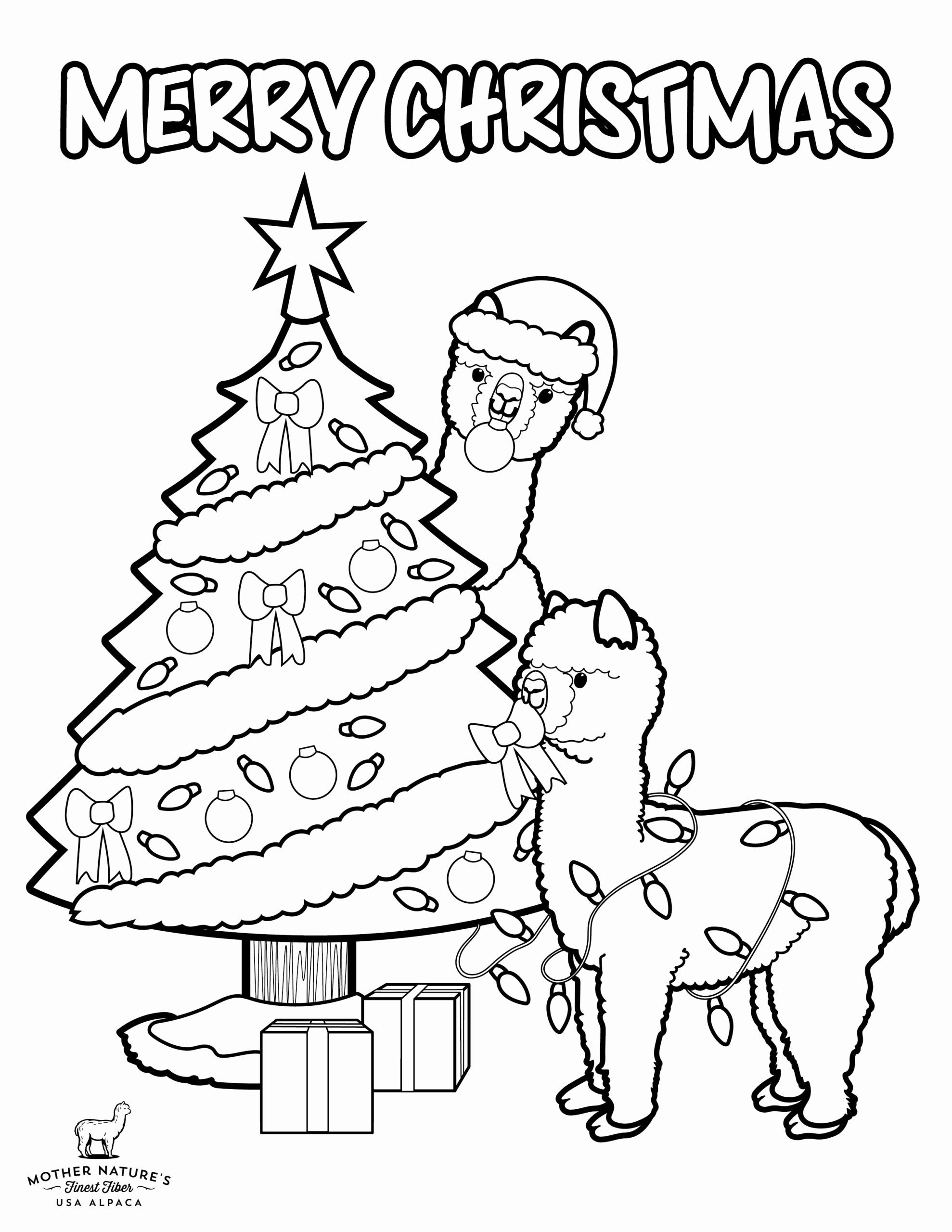 Coloring Activities for 5th Graders Fresh Coloring Page