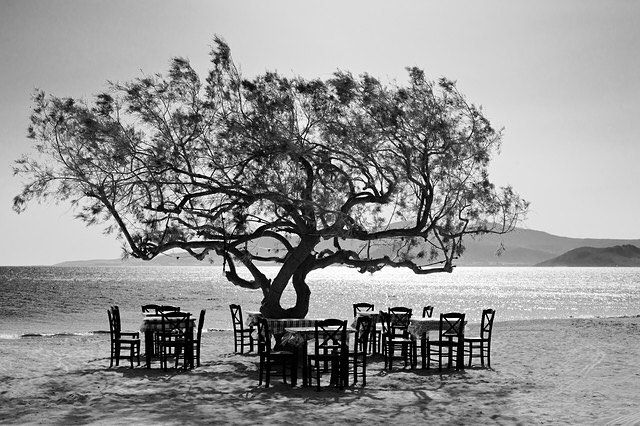 'The tree' by Simon Bode #tree #naxos #greece #photocircle #blackandwhitephotography #fineartphotography #beach #summer #chairs #picoftheday #griechenland #fotokunst #fotografie