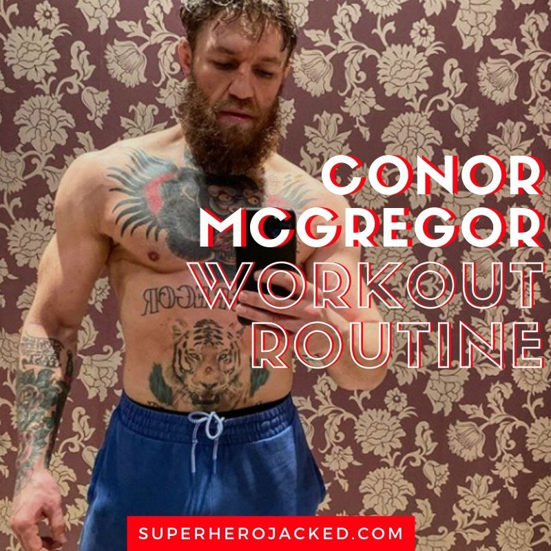 Conor Mcgregor Workout Routine And Diet Plan Train Like A Champion Conor Mcgregor Workout Celebrity Workout Routine Workout Routine