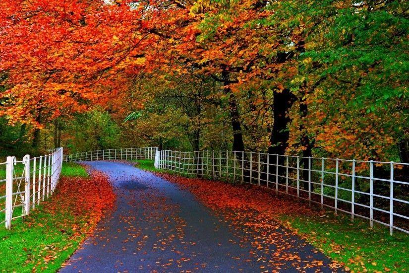Beautiful Full Size Hd Wallpapers Beautiful Nature Wallpaper Hd Beautiful Wallpaper Hd Hd Nature Wallpapers