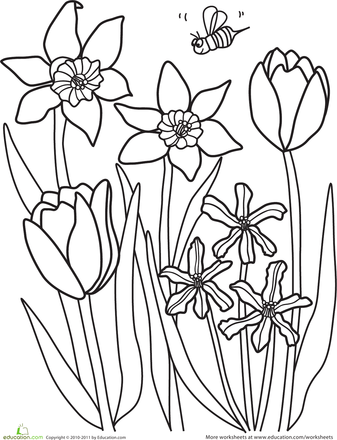 Color The Spring Flowers Worksheet Education Com Spring Coloring Sheets Flower Coloring Sheets Flower Coloring Pages