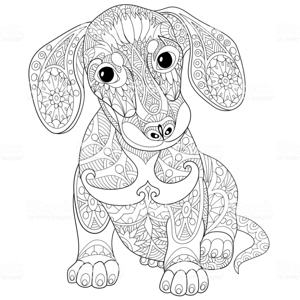 Dachshund Puppy Dog Symbol Of 2018 Chinese New Year Freehand Sketch In 2020 Dog Coloring Page Animal Coloring Pages Dog Coloring Book