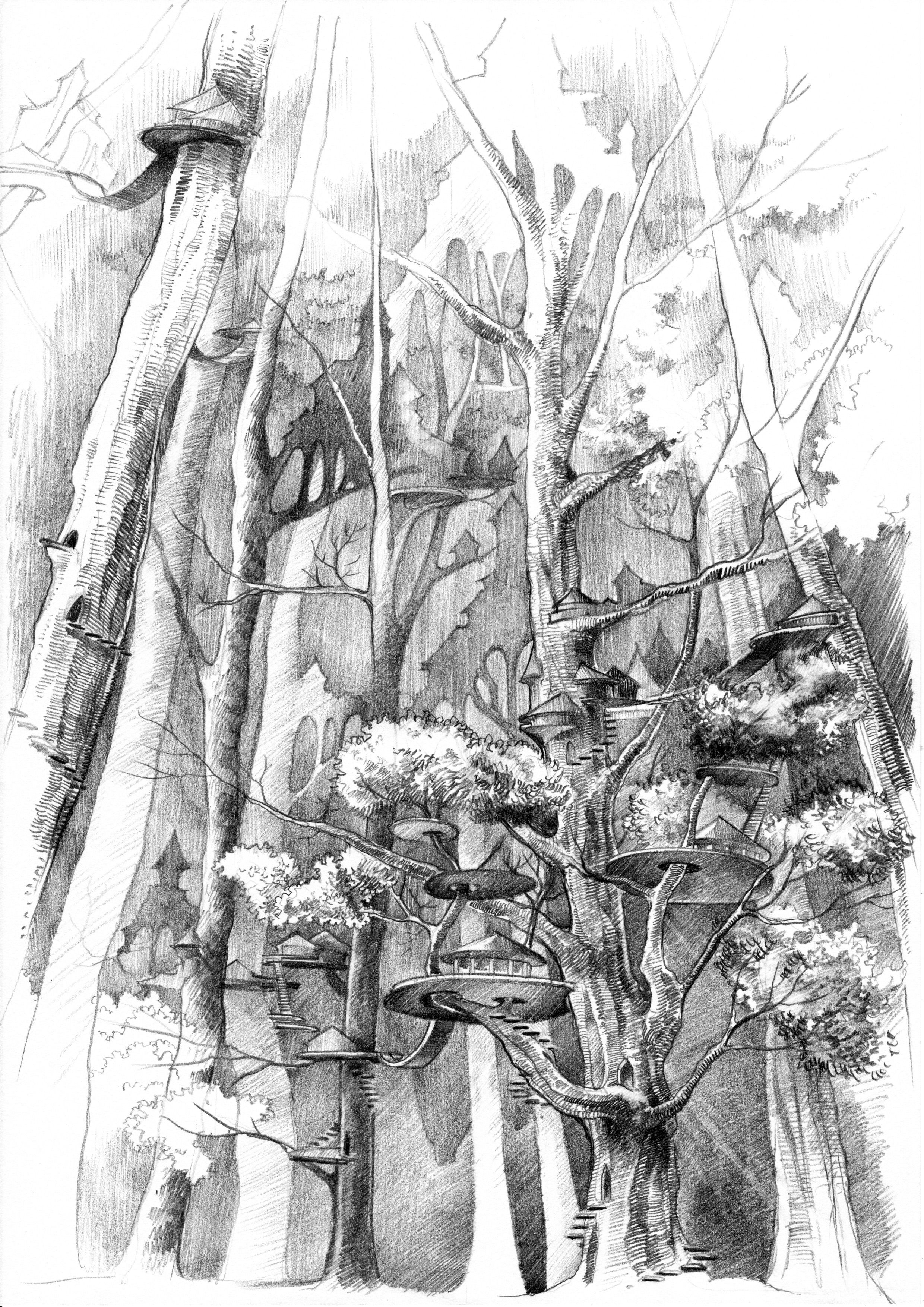 pencil #drawing by #malinowska #minkulul of Ferrun, an #elf