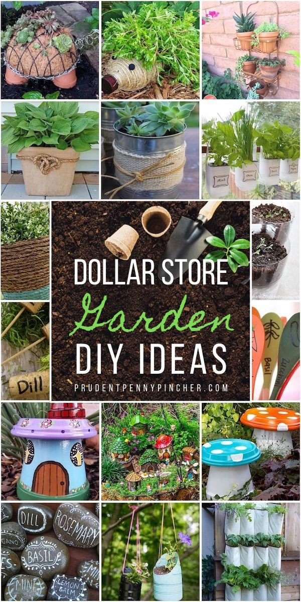 100 Dollar Store Garden DIY Ideas