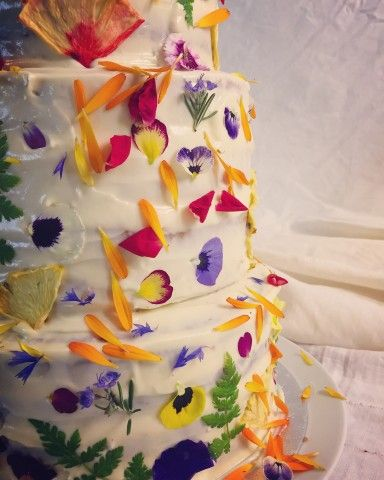 Greens of Devon Edible Flowers Devon Cake and Wedding cake