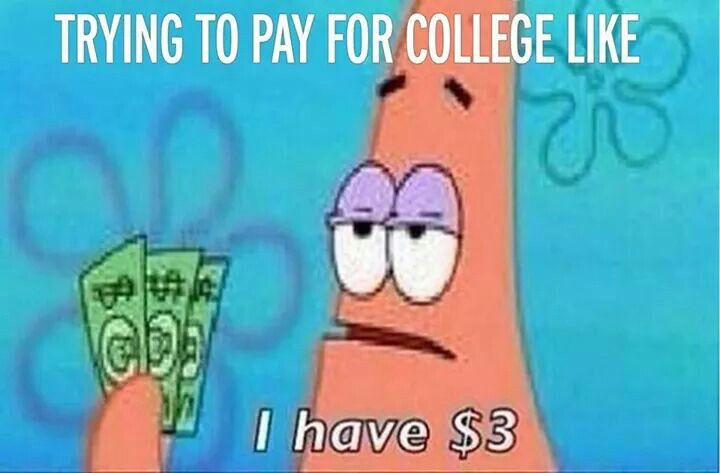 Patrick Spongebob Trying To Pay For College Like I Have 3 Humour Rire Drole