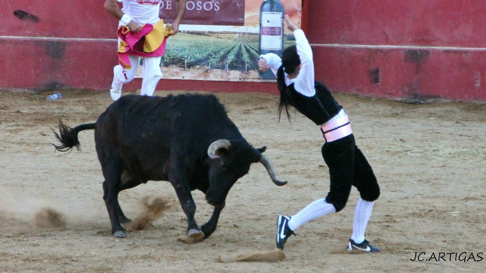 ganaderias taurinas | Publicado por Fotos Taurinas Jose Carlos Artigas en 8:54