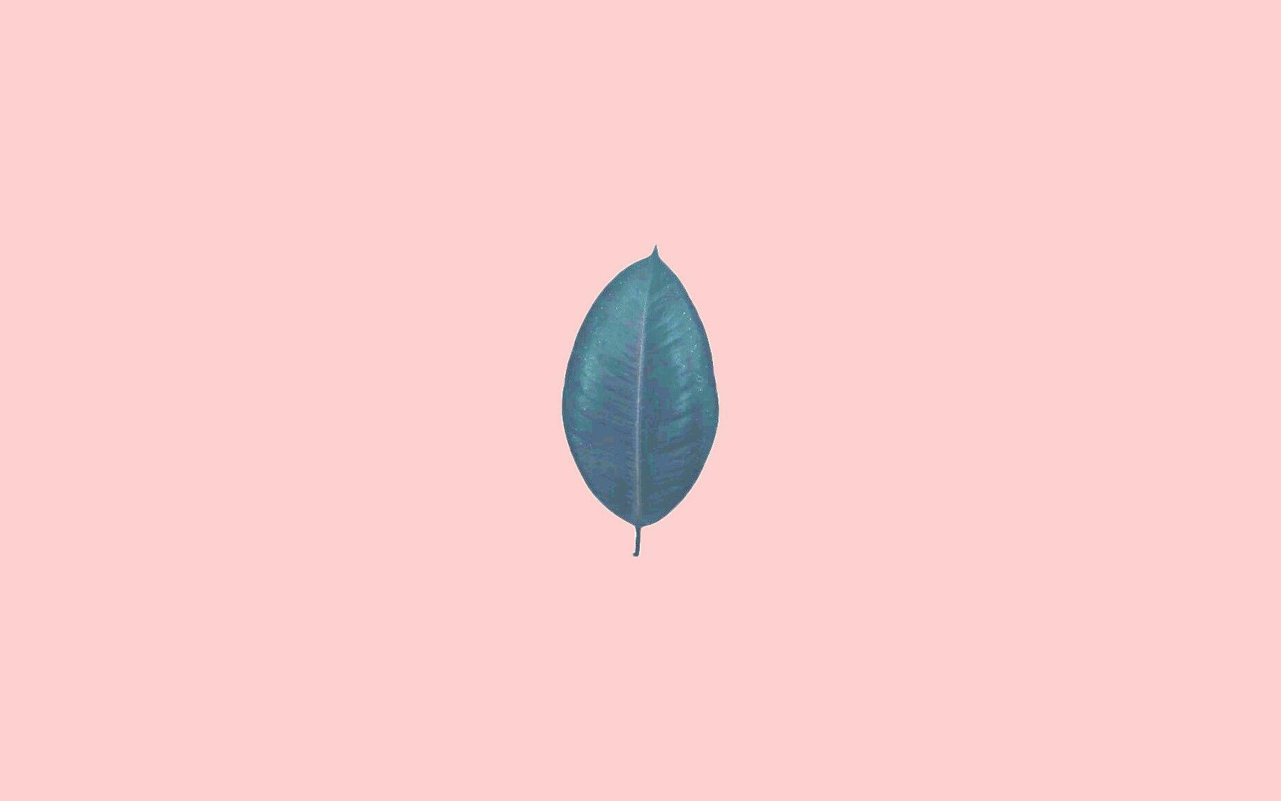 Fall Macbook Wallpaper Tumblr Pastel Aesthetic