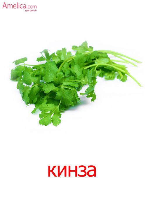 овощи картинки для детей, карточки домана скачать   Овощи ...
