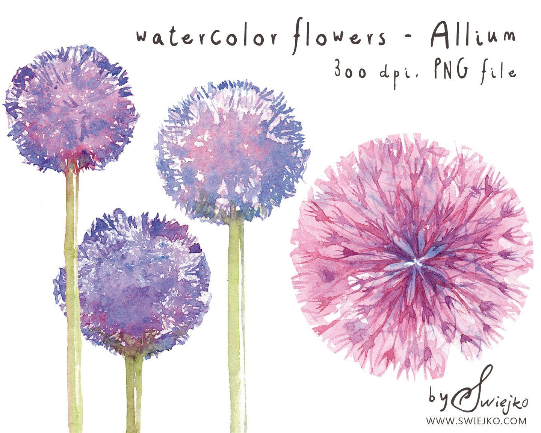 Watercolor Clipart Watercolor Flowers Flower Clipart