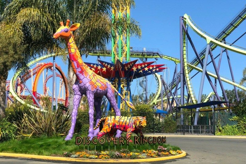 Tips Tricks For Six Flags Discovery Kingdom I M Going In May For My 30th Birthday Six Flags Kids Vacation Hong Kong Travel