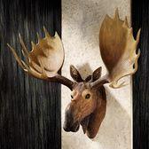 Animal Wall Sculptures - Wall Sculptures - Wall Decor - Design Toscano