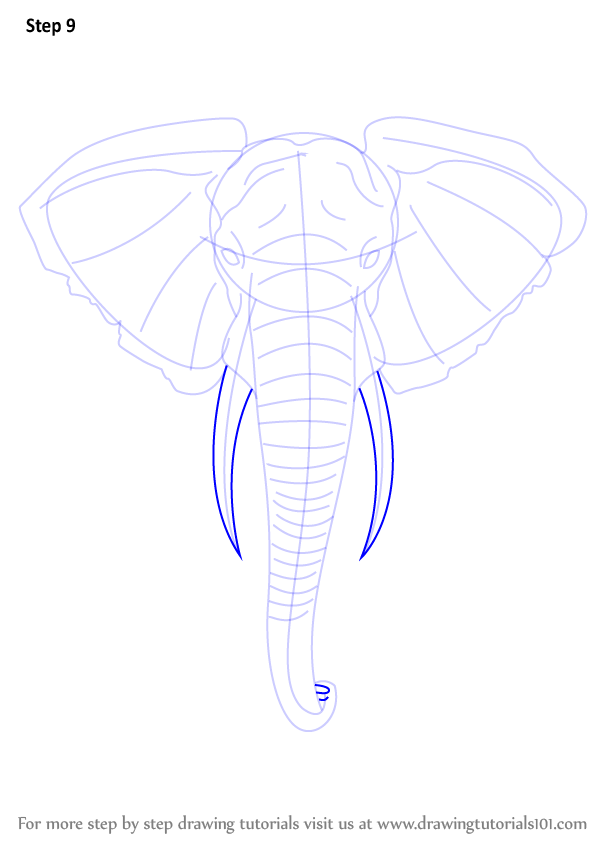 Elephant Is A Big Animal And Is Found In Various Parts Of The World It Is Liked By Kids Of Every Age Elephant Head Drawing Elephant Drawing Elephant Sketch