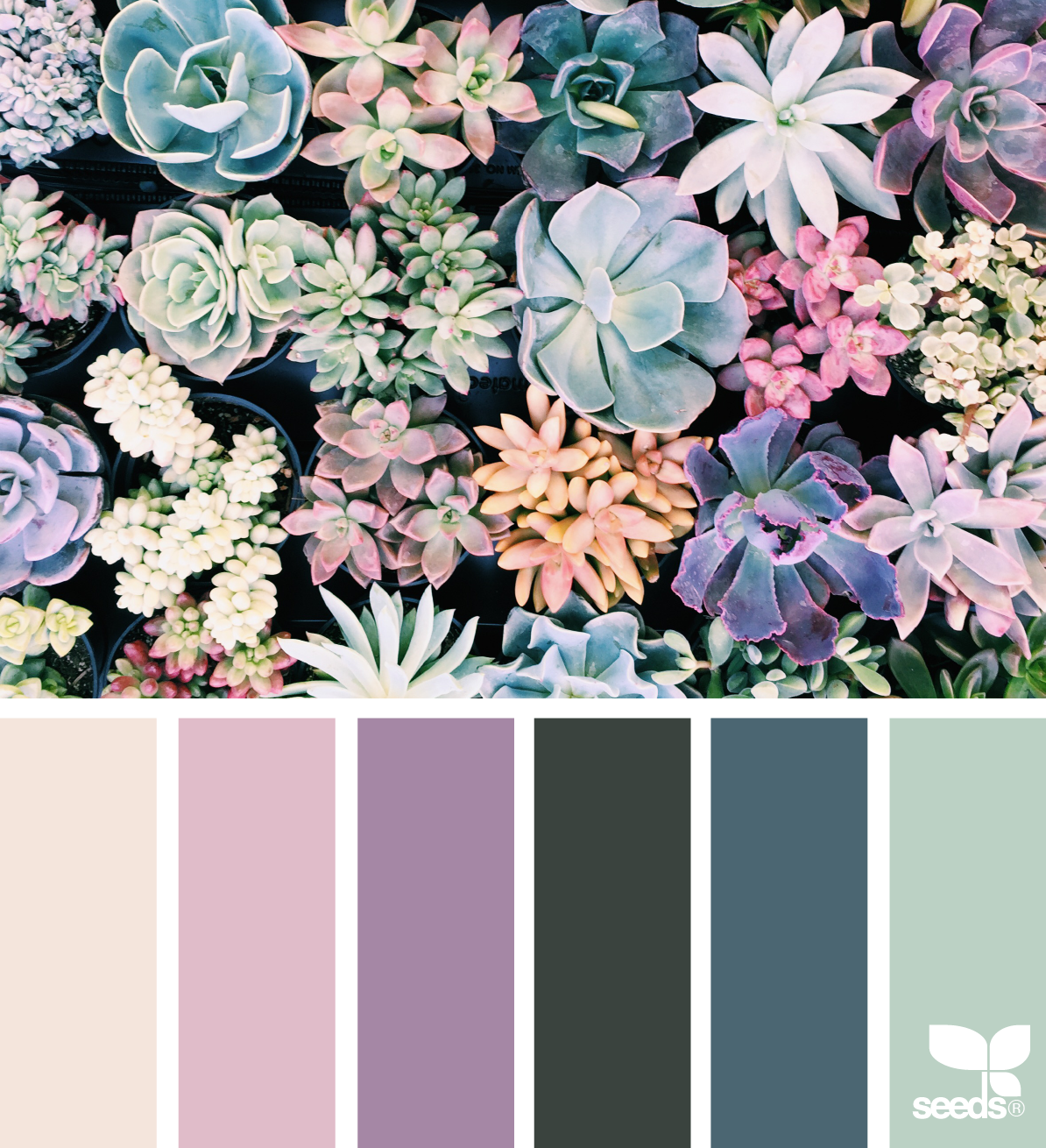 succulent hues My walls are already this buff shade in the living room. Love the rest!!