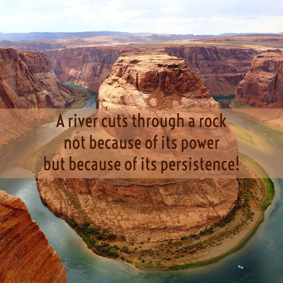 Persistence Quotes Words Of Wisdom Success Affirmations