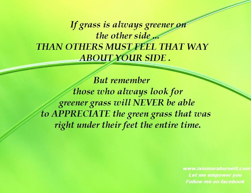 Grass Is Always Greener Quotes: If Grass Is Always Greener On The Other Side.... Than