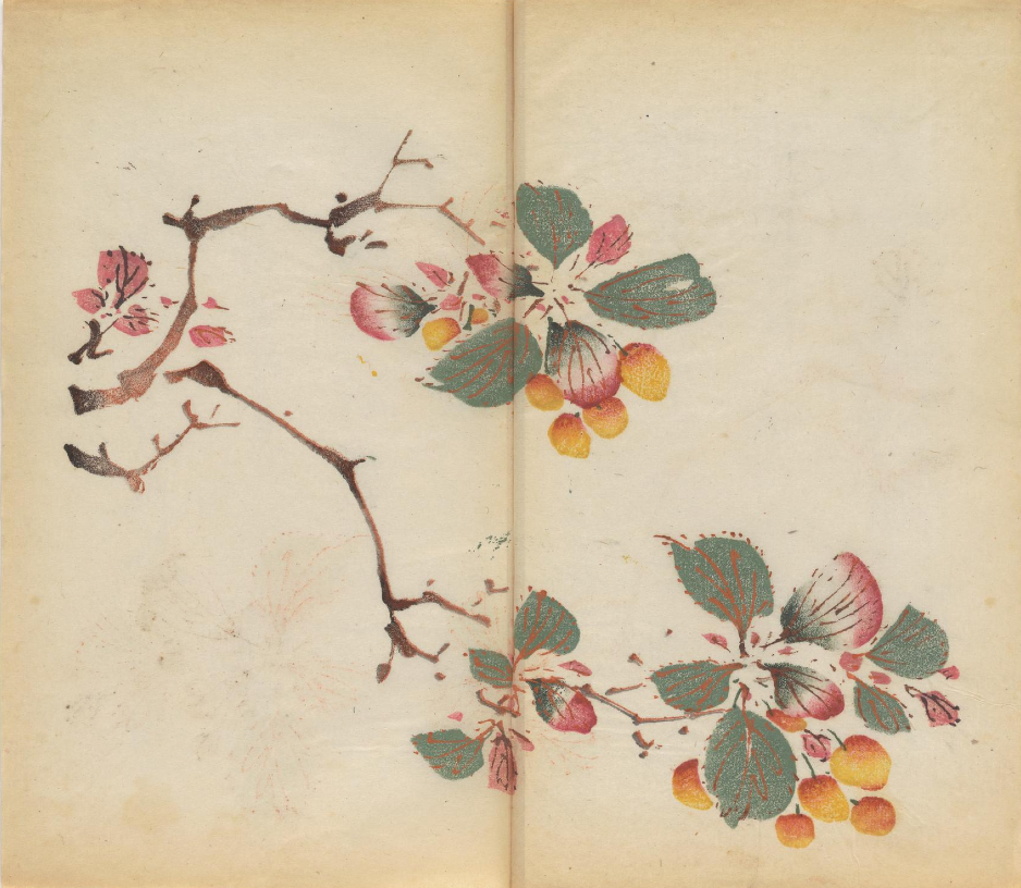 """""""...Shi zhu zhai shu hua pu, or Manual of Calligraphy and Painting, a seventeenth-century Chinese book by the Ten Bamboo Studio, based in Nanjing. First published in 1633, it's believed to be the earliest surviving example of multicolor printing—specifically, of a woodcut technique known as douban in which inks of varying colors are applied in succession, giving the finished print the look of a hand-painted watercolor..."""""""
