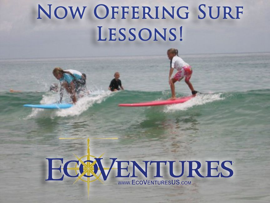 Learn To Surf With The Pros At Ecoventures In A Fun And Relaxed Environment We Provide The Surfboards And Equipment B Surf Lesson Surf School Learn To Surf
