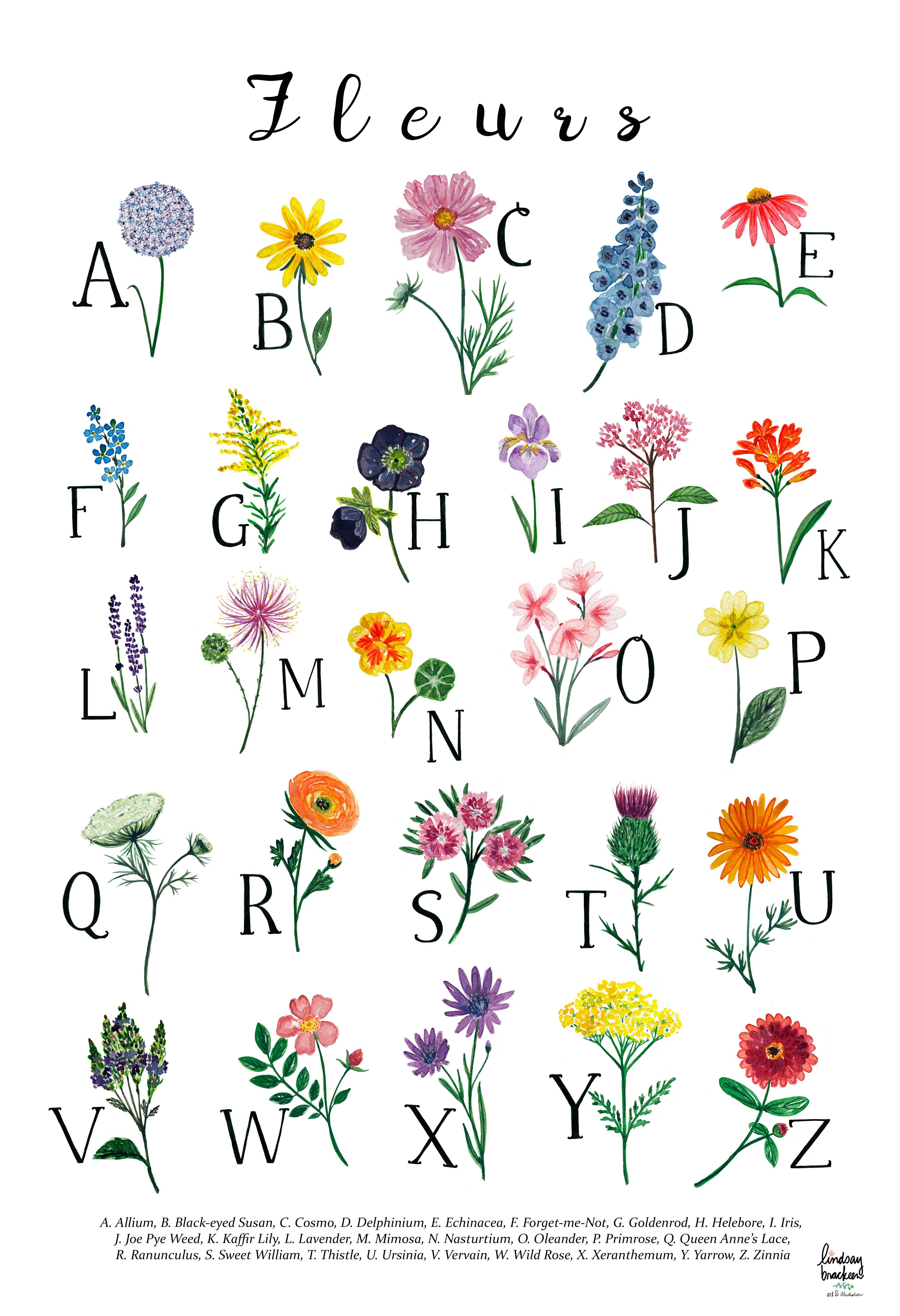 Flower Floral Alphabet Print Wall Art Abc Nursery Childrens Room
