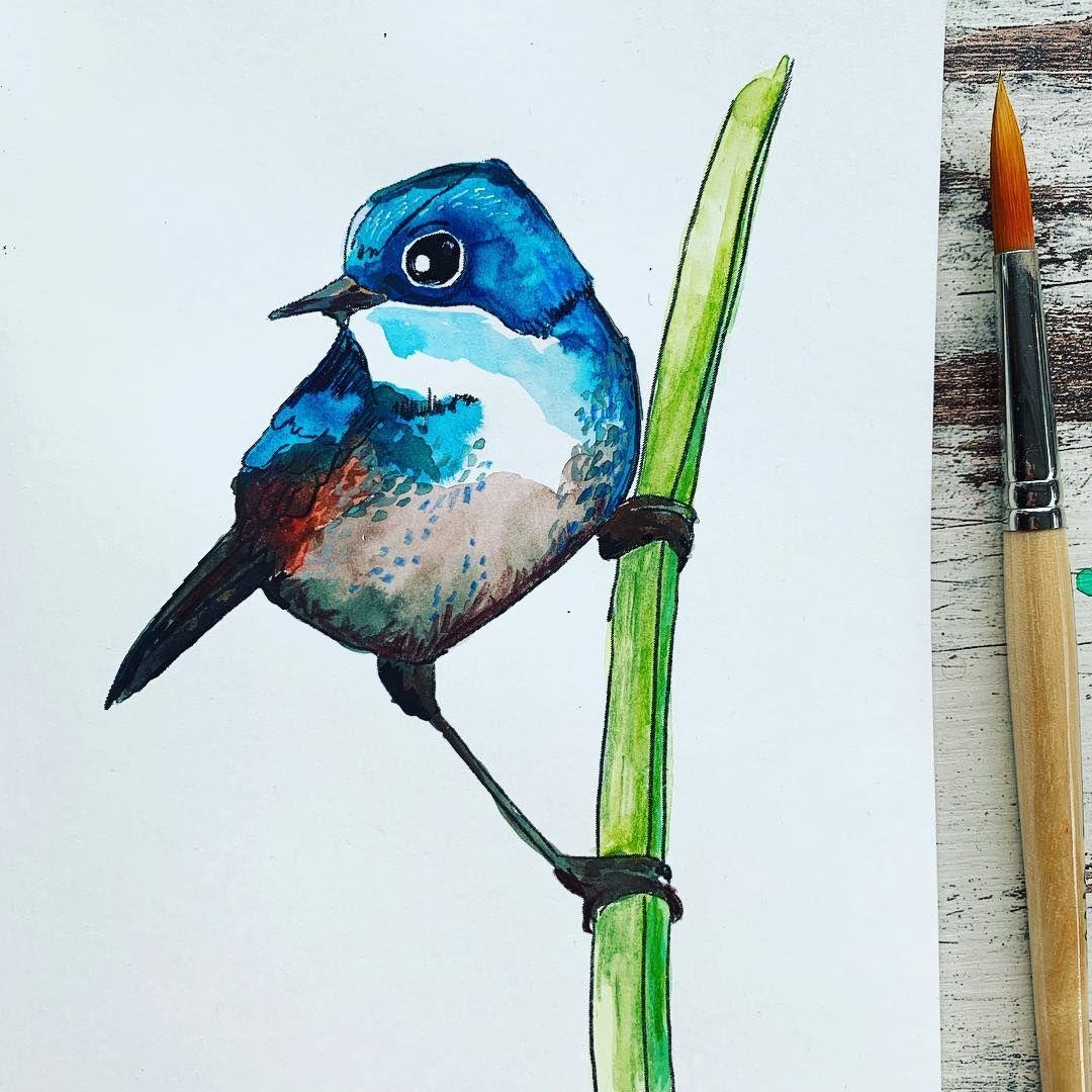 Bird Watercolor Aquarell Wasserfarbe Howtopaint Tutorial