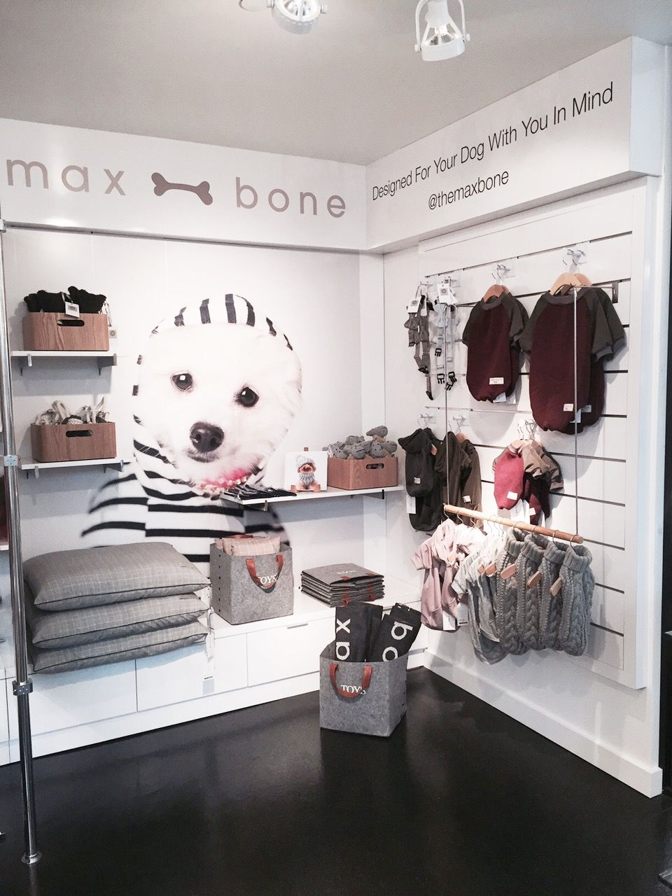 Maxbone Store In Beverly Hills Pet Store Ideas Pet Store Design