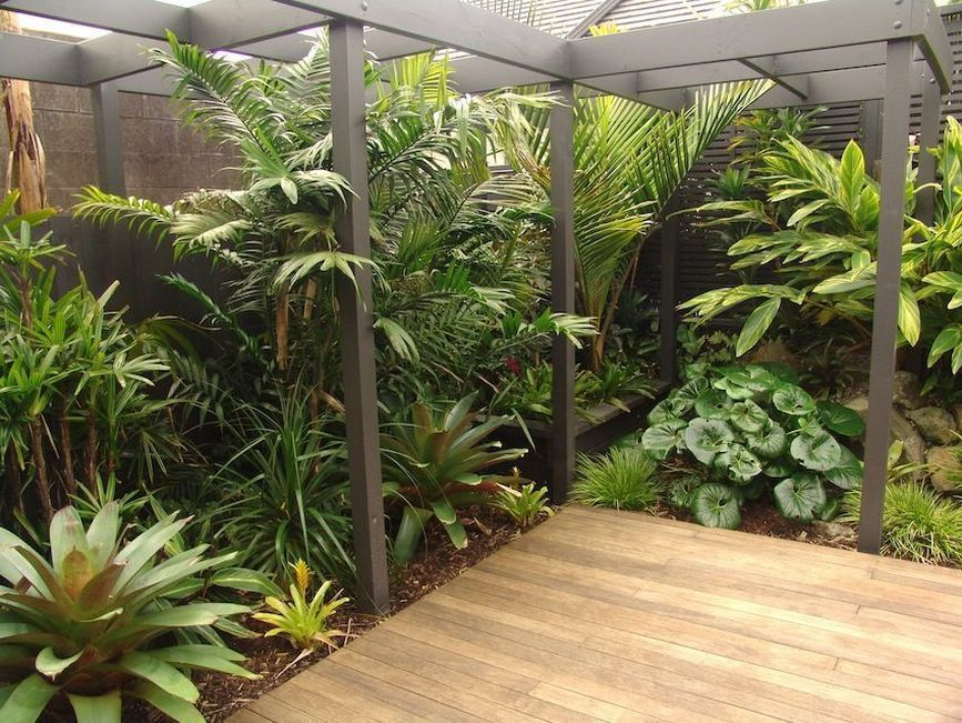 2 pool landscaping ideas tropical small backyards on attractive tropical landscaping ideas id=19061