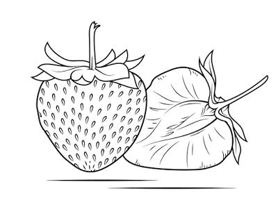Aneka Gambar Mewarnai Gambar Mewarnai Buah Strawberry Untuk Anak Paud Dan Tk Buku Mewarnai Warna Gambar