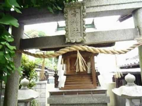 Sachi(幸) shinto shrine in Hiroshima city.Small shrine. A big ginkgo tree stands on small temple ground.  A little gateway at the entrance to a Shinto shrine is made of stone. http://japan-temple-shrine.blogspot.jp/2013/10/sachi-shinto-shrine-which-stand-next-to.html