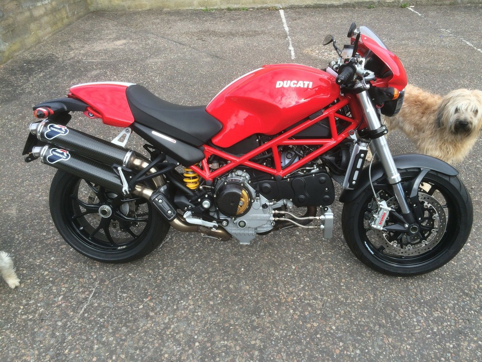 DUCATI MONSTER S4R | eBay | bikes | Pinterest | Ducati monster s4r