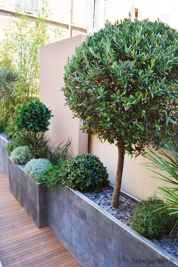 La terrasse d'un showroom « Slowgarden / Design Terrasses et Jardins::