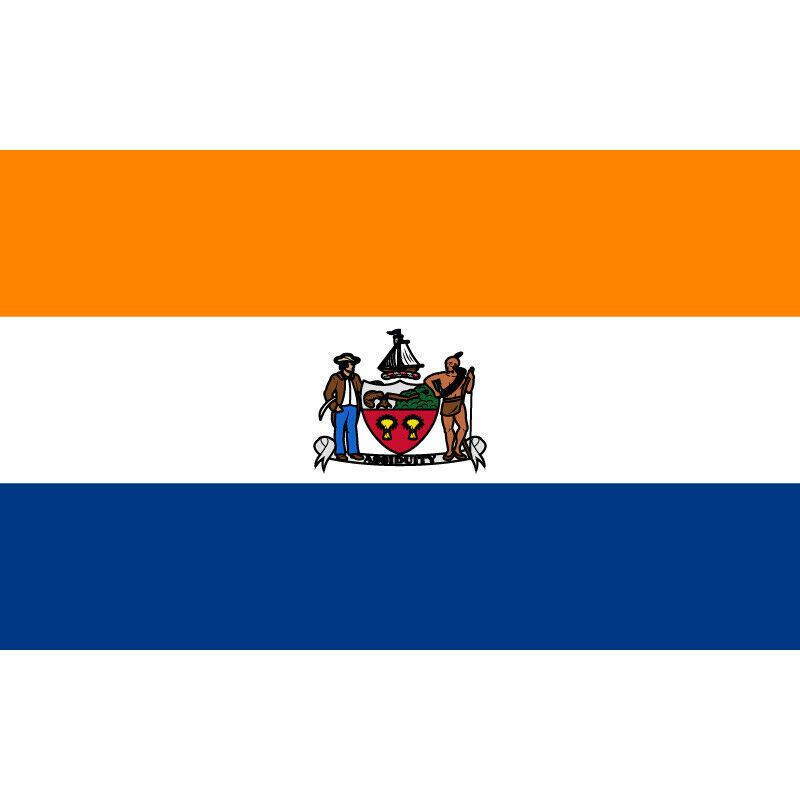 Albany City Flag Of New York State 90 150cm 60 90cm Flag 3x5ft Custom Polyester Doesnotapply In 2020 City Flags Buffalo City New York State