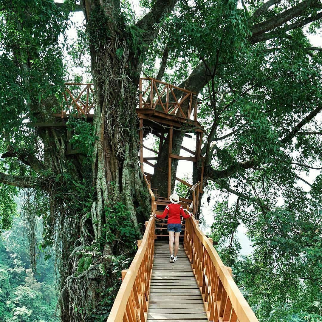 Taken At Rumah Pohon Curug Ciherang Bogor Rumah Pohon Tempat Rumah