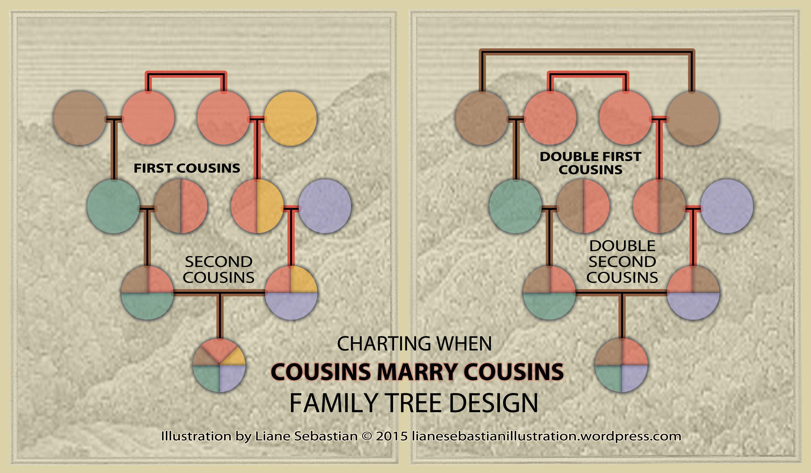 Visualizing Genealogical Relationships Double Cousins