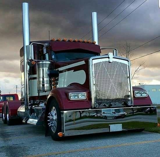 Cat Trucking Gif Trailer