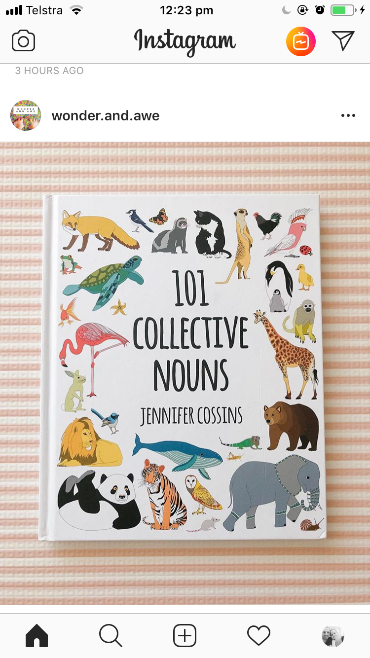 Pin by Brianna Reeve on Picture books Collective nouns