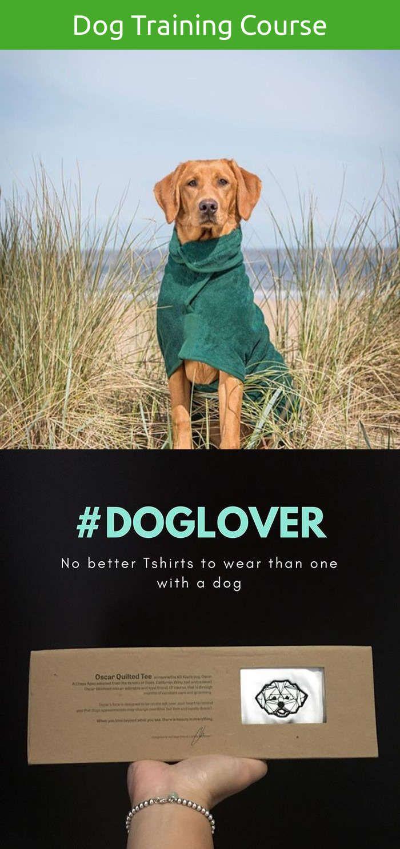 Intelligent dog clothes dog training barking walks pinterest