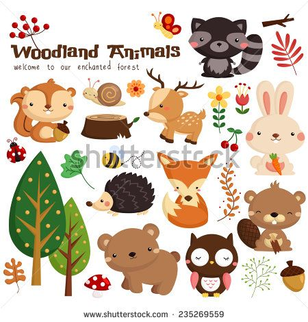 Woodland Animal Vector Set 235269559 Shutterstock Woodland Animals Woodland Critters Animal Clipart
