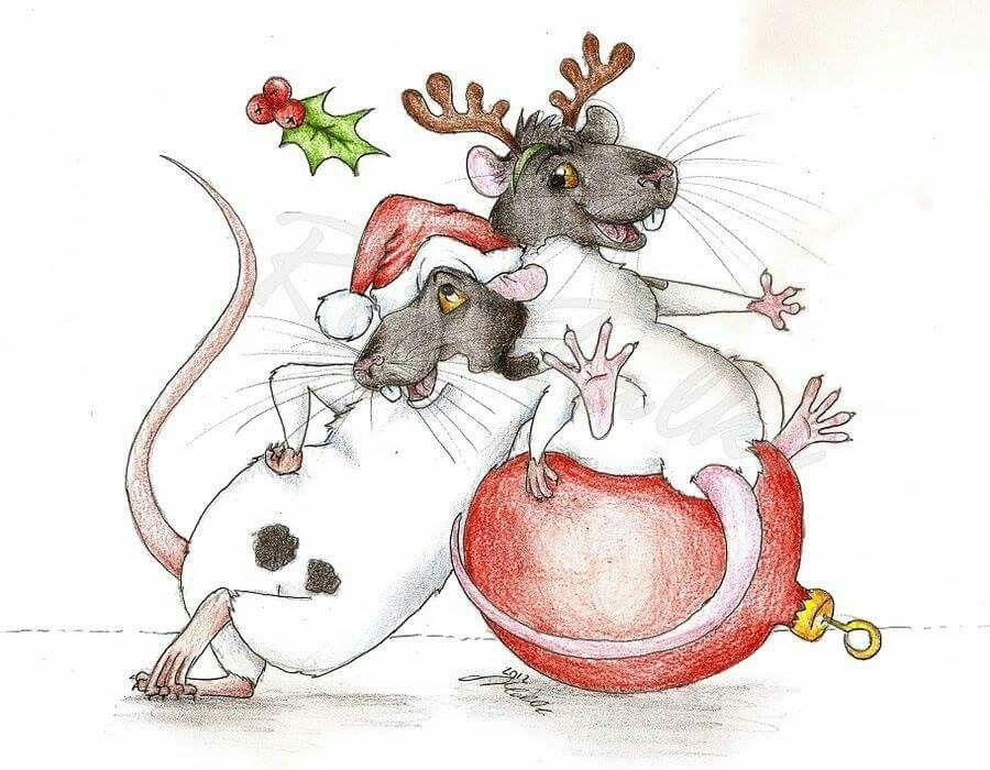 Rattie xmas art   Крыса, Рождественские картины ...