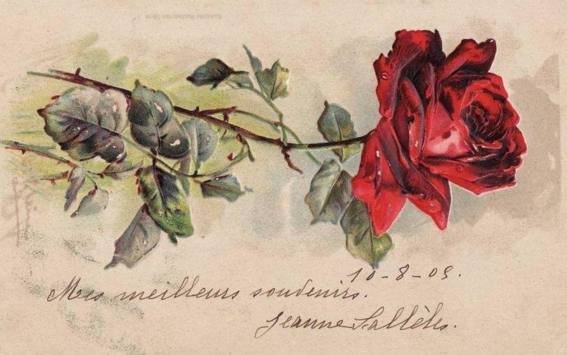 испечь старинные открытки розы птицы