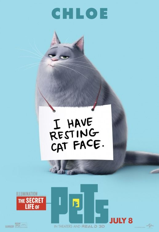 Click To View Extra Large Poster Image For The Secret Life Of Pets With Images Pets Movie Secret Life Of Pets Secret Life